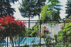 Ornamental fences are usually last the longest and the lowest to maintain. These high quality fences can be installed with steel or for a more affordable option, aluminum. Ornamental fences are great for curb appeal and adding value to your property.